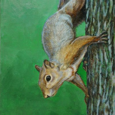Arboreal Greeter wildlife art